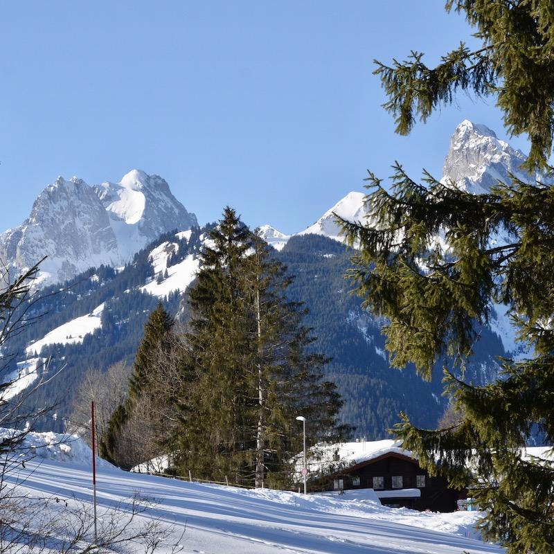 2019-02-17 / Conditions parfaites pour le XCX de Schönried…