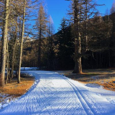 Premier entraînement sur la neige pour certains…